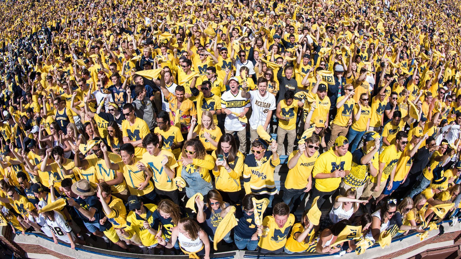 Image result for michigan football student section